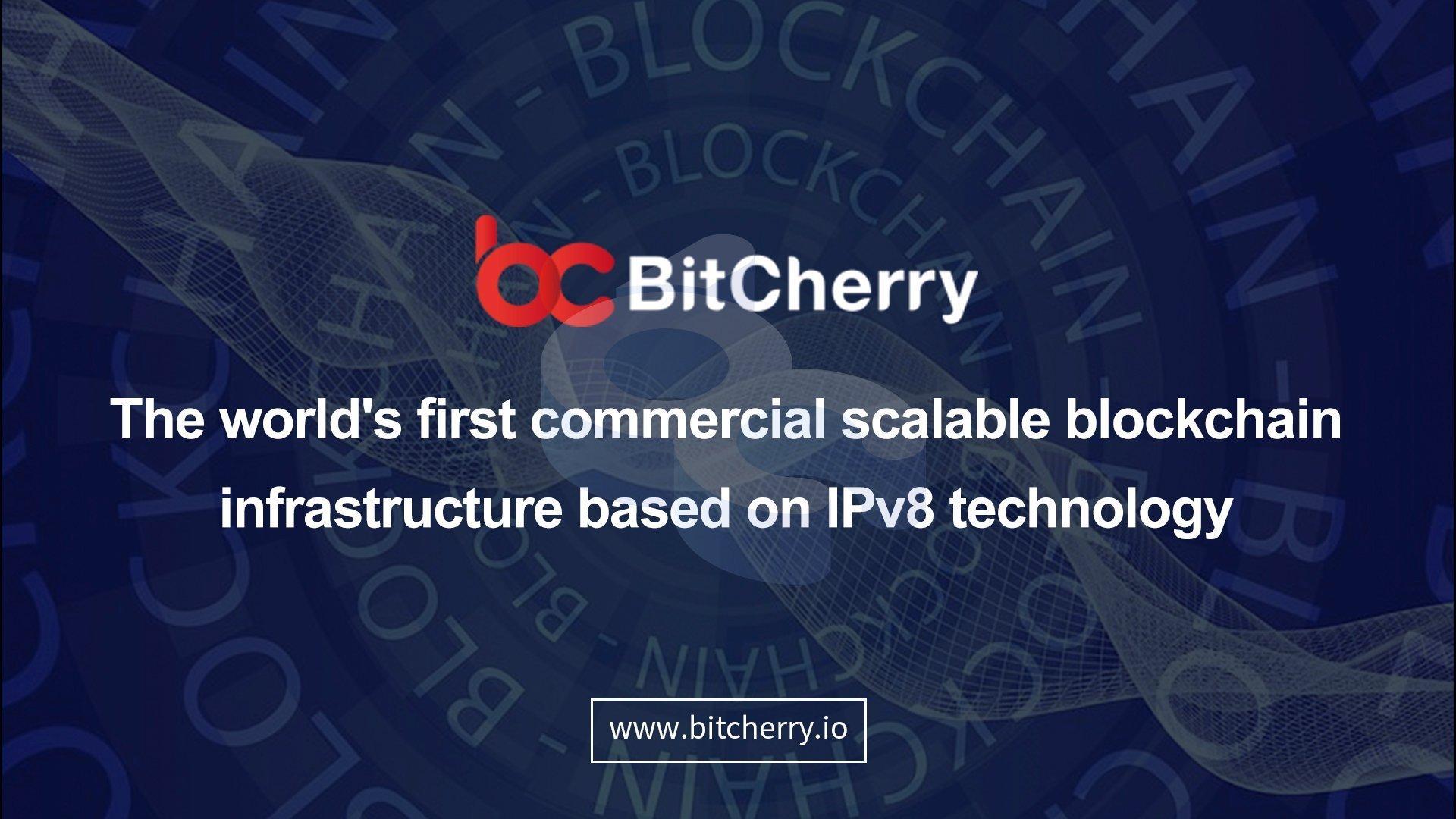 IPv8——BitCherry对IP层面的探索
