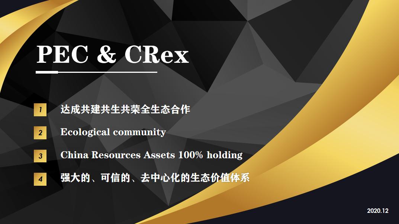 PEC-中文2.png